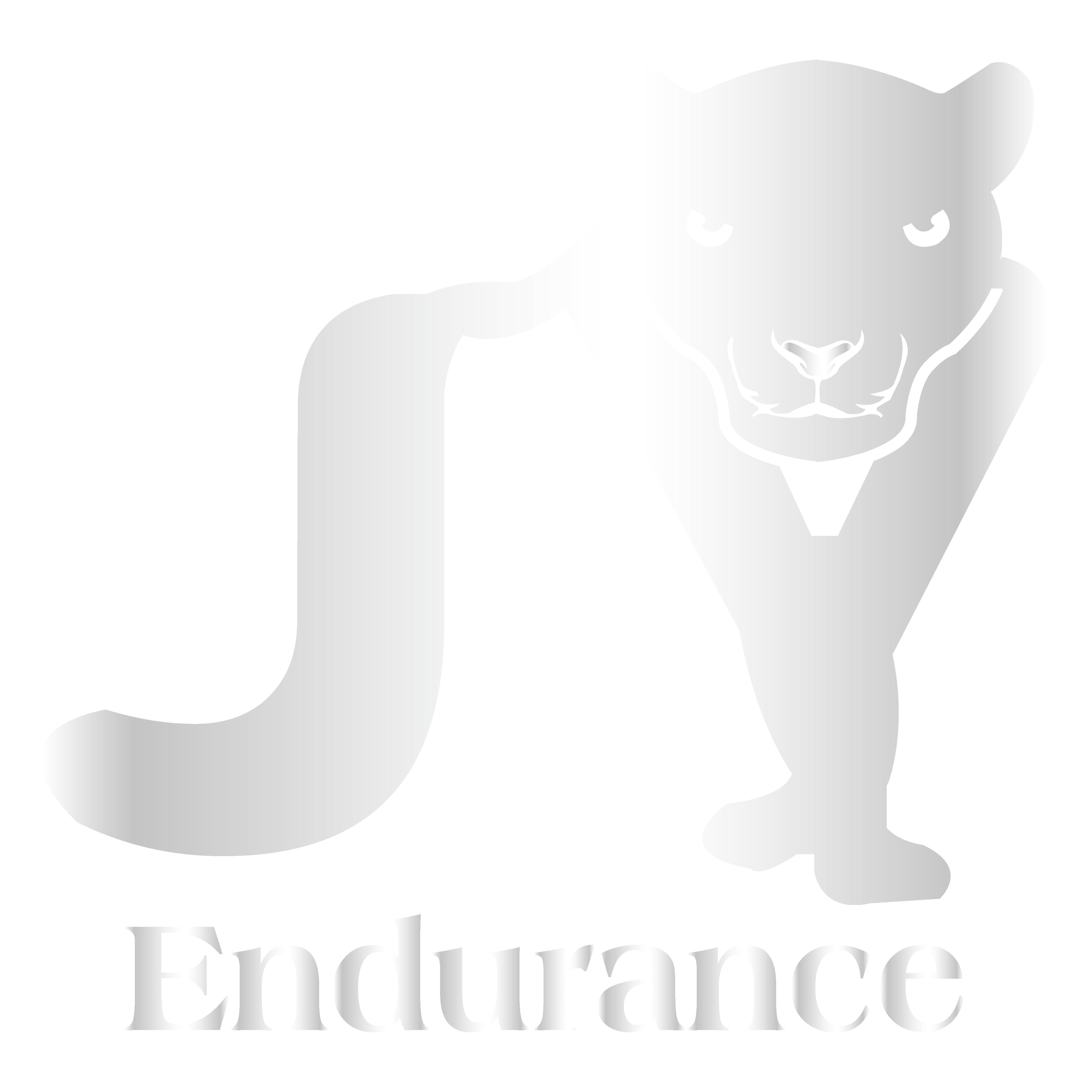 JY Endurance